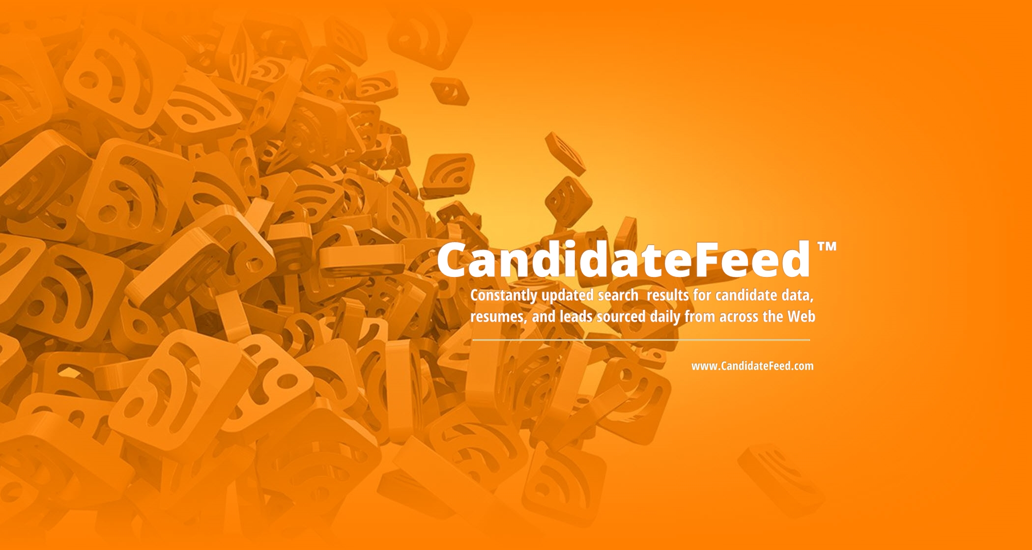 CandidateFeed.com | Candidate leads, updated daily
